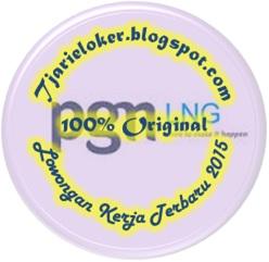 Logo PT PGN LNG Indonesia