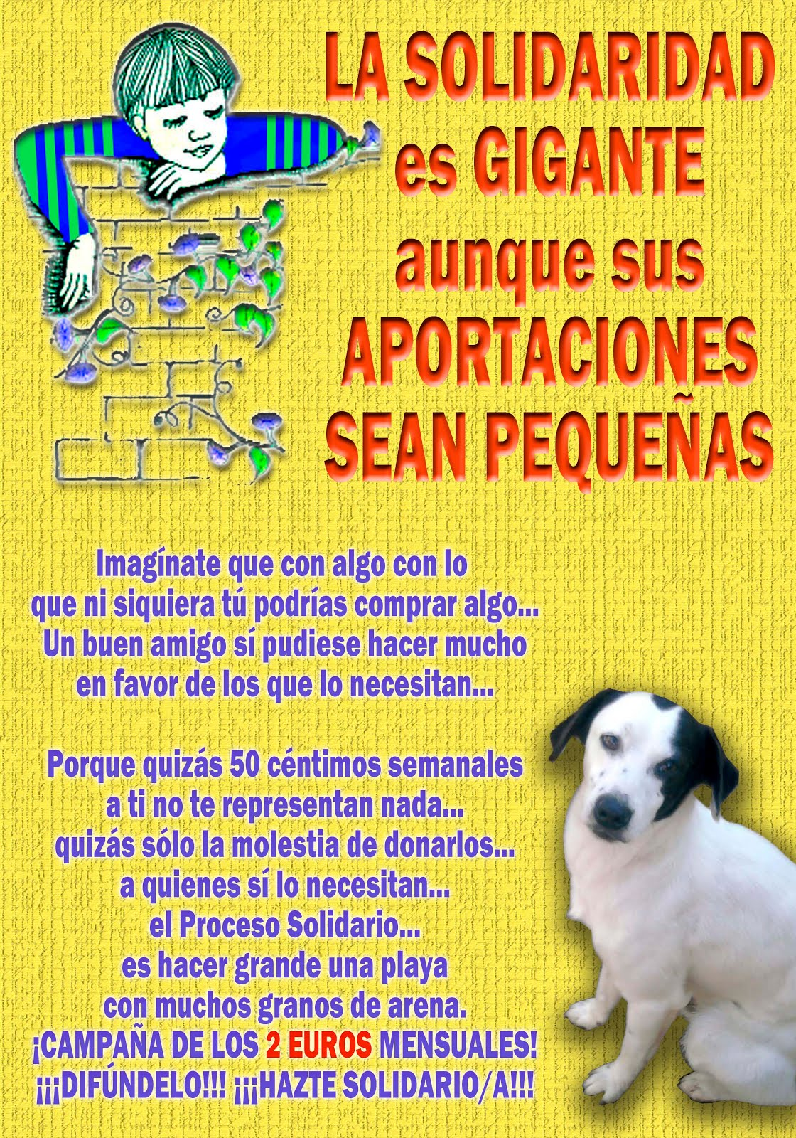 Ayuda a perritos en riesgo de muerte