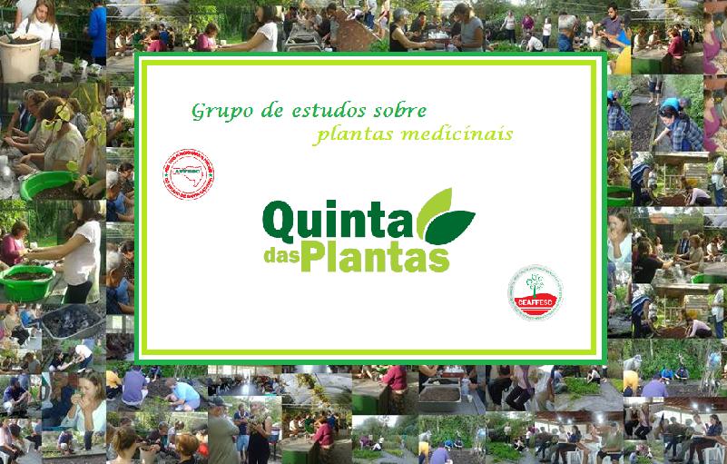 Blog - Quinta das Plantas