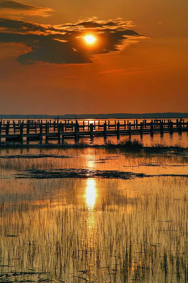 Chincoteague-Bay-Virginia