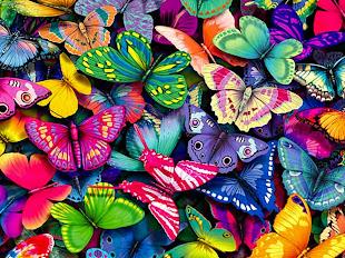 Los colores de mi camino