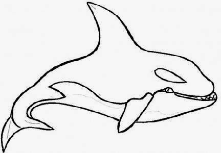 Free whale coloring pages for kids for Killer whale coloring page