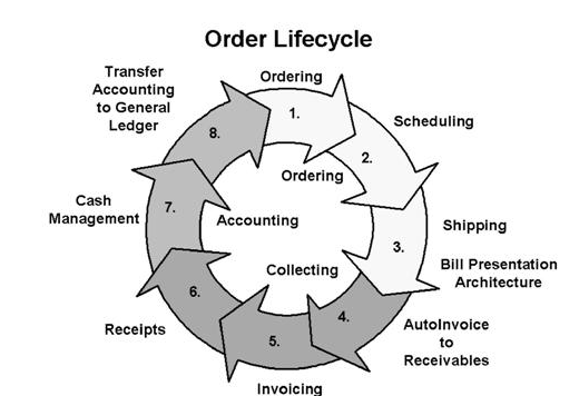 order to cash cycle in oracle apps order management