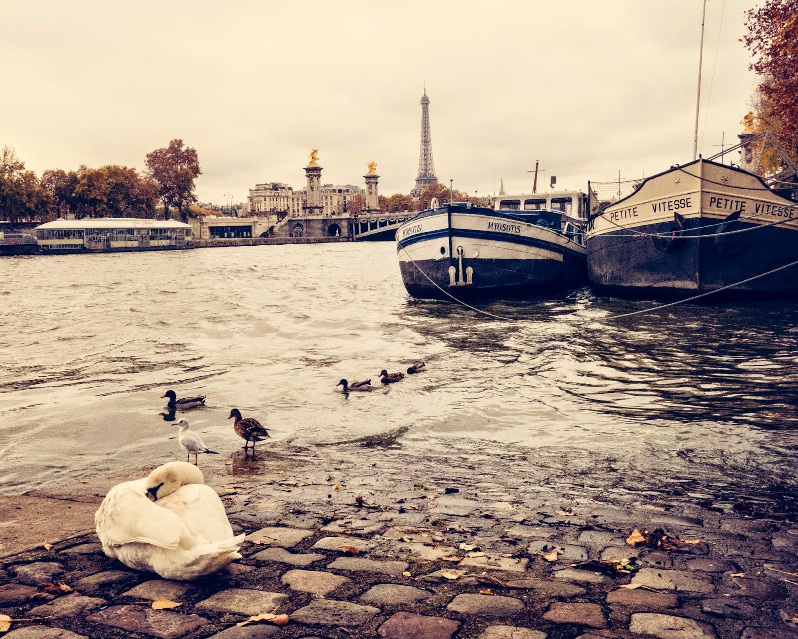 Galia Alena Travel Photography Paris