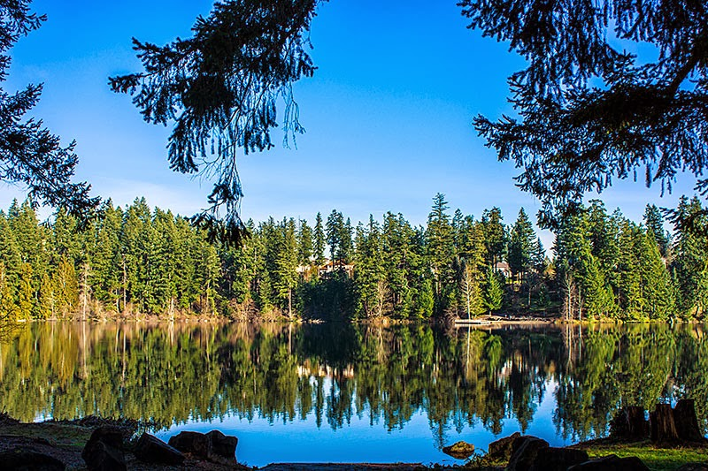 Lake Wilderness Maple Valley