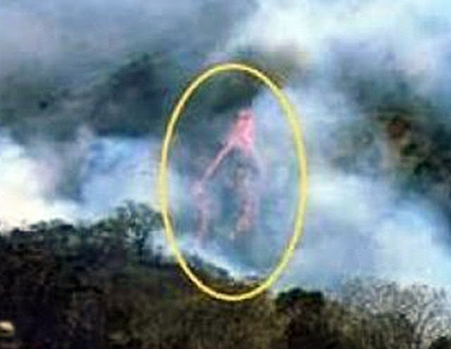 Priest Captures Picture of the 'Virgin Mary' in a Colombian Forest Fire