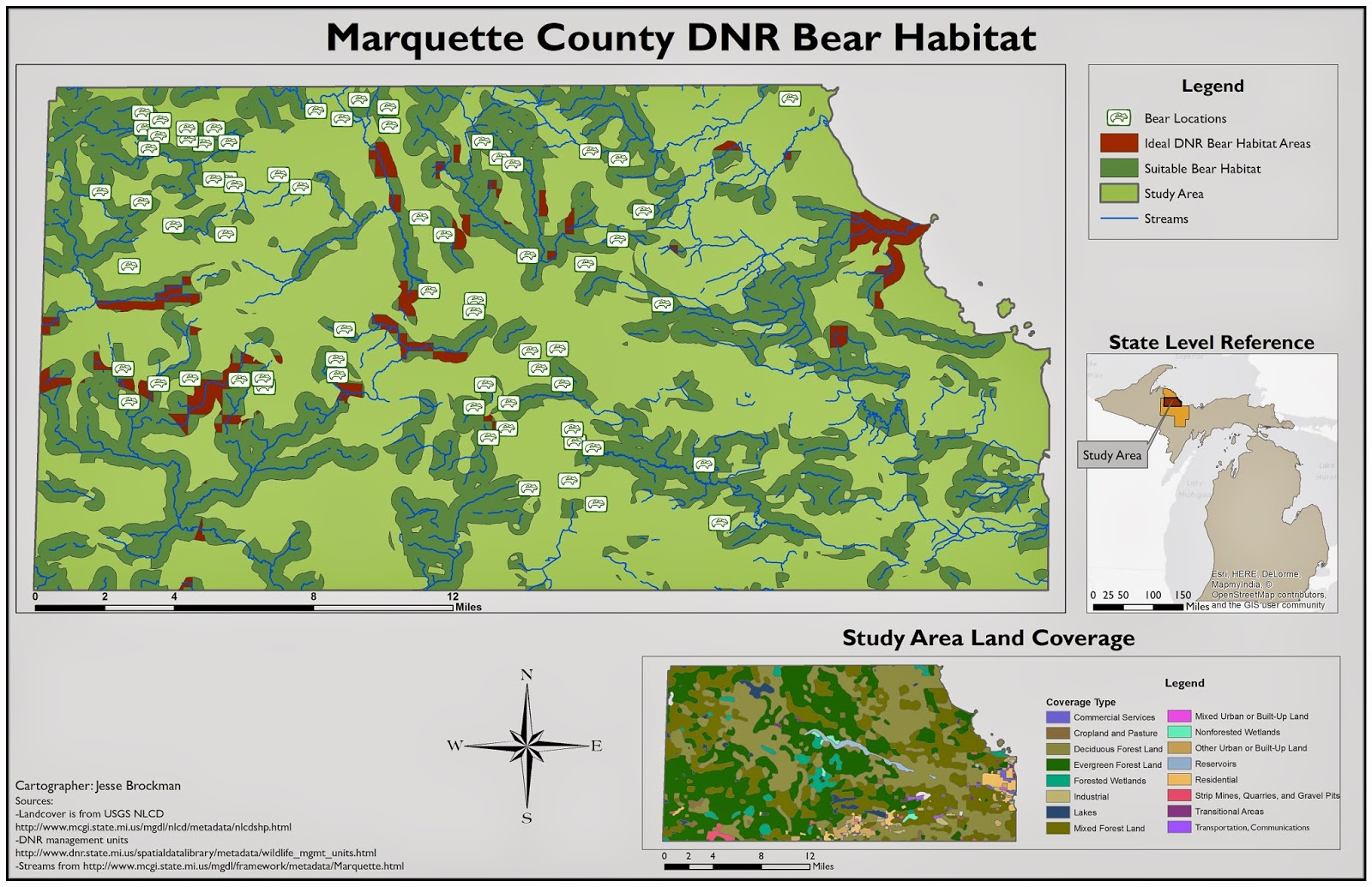 map of dnr bear management areas