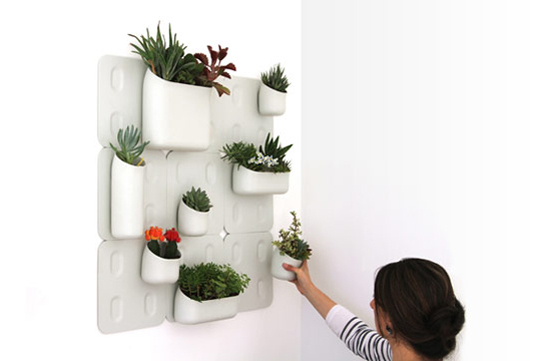 Initiales gg urbio le jardin vertical modulable for Mural jardin