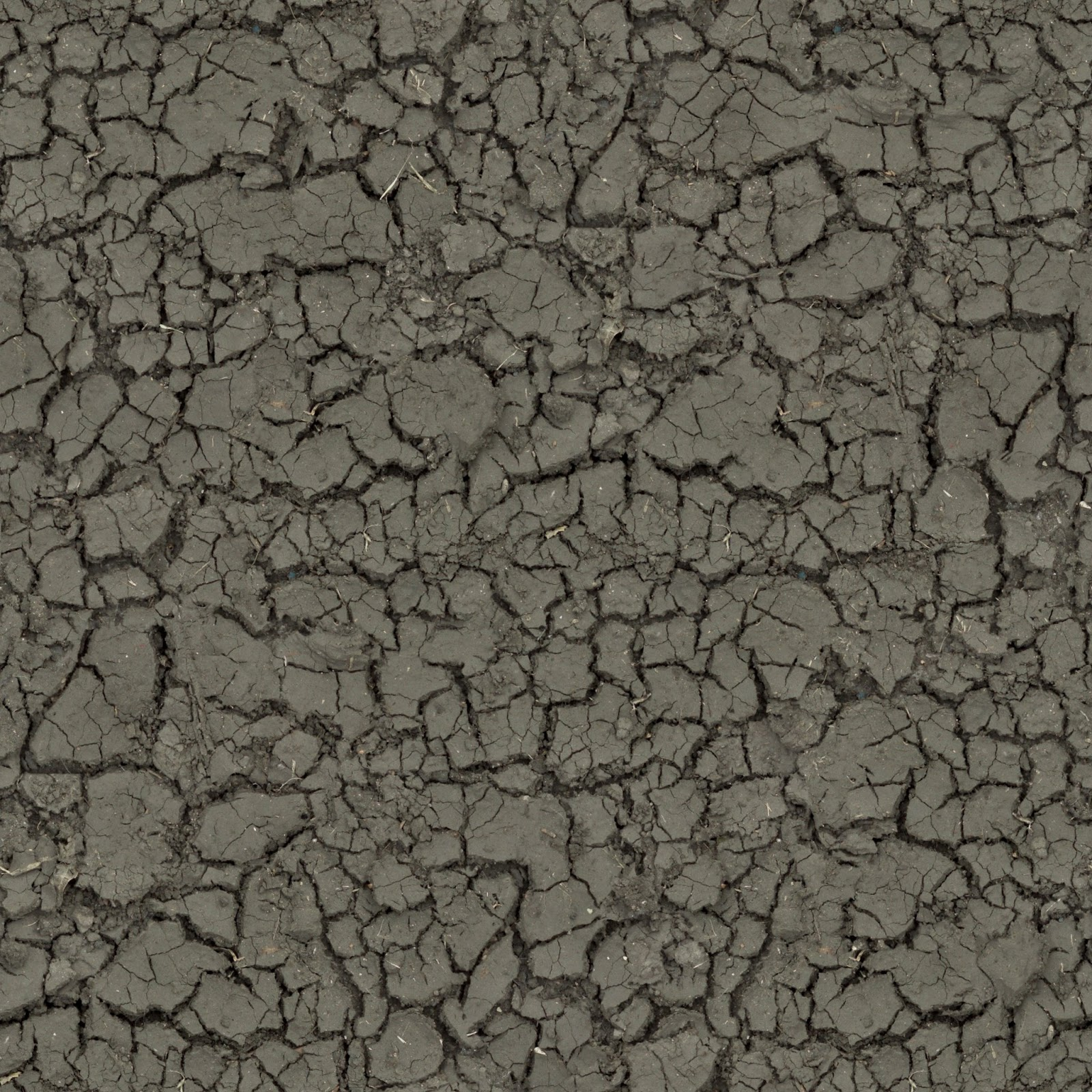 Mud cracked dirt soil ground seamless texture 2048x2048