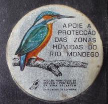 CONHEÇA O PAUL VISITE ARZILA, ANOBRA E PEREIRA