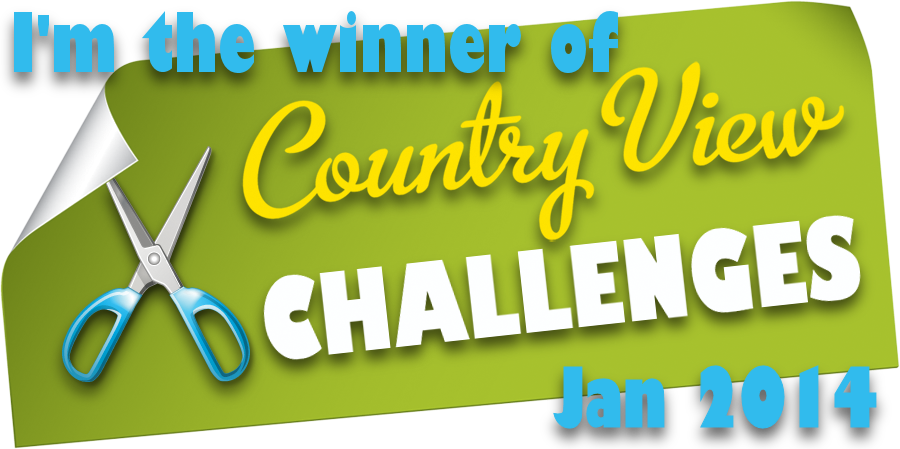 Winner: Country View Challenges Jan 2014