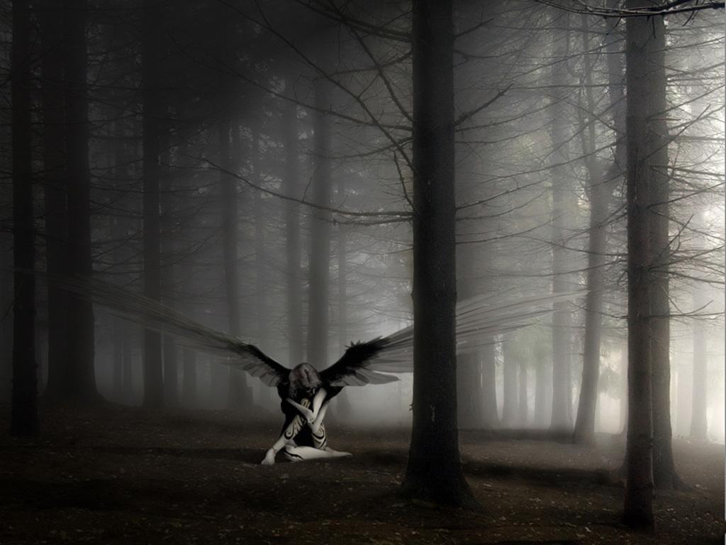 http://1.bp.blogspot.com/-LLeyVajPr3o/TygRS30d5AI/AAAAAAAABZc/I0oc5UzTXjQ/s1600/angel--wallpapers--free--.7.jpg