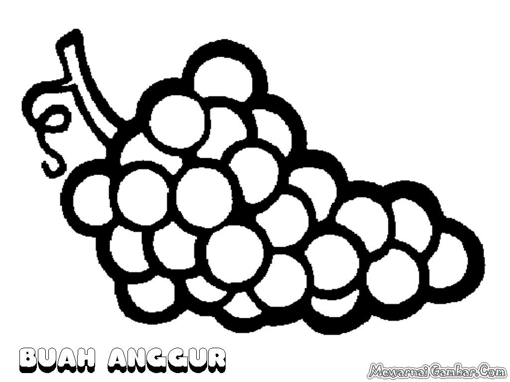 Image Kumpulan Gambar Mewarnai Buah Anggur Koleksi  Halaman Download