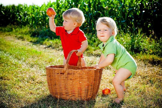 Filip i Leon -fotografia dziecięca