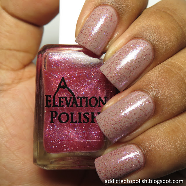 elevation polish ratatouille strychnine