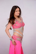 Sneha Ullal Glamorous in Pink Photo shoot-thumbnail-8