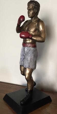 Todos somos Boxeador
