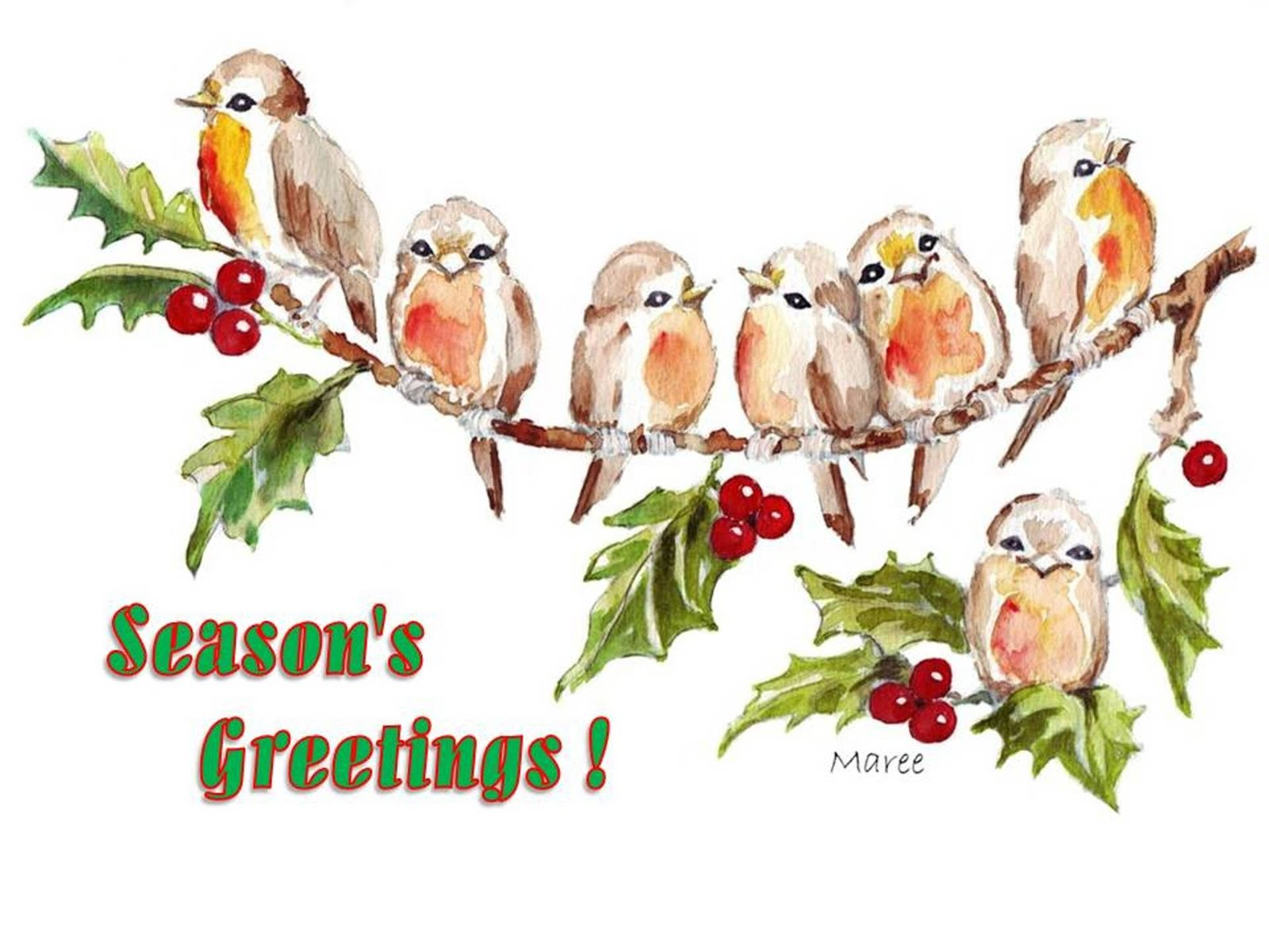 Hedgie's Nature Journal : Season's Greetings 2012!