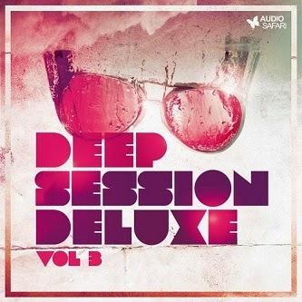 deep session deluxe vol 3 baixarcdsdemusicas Deep Session Deluxe Vol 3