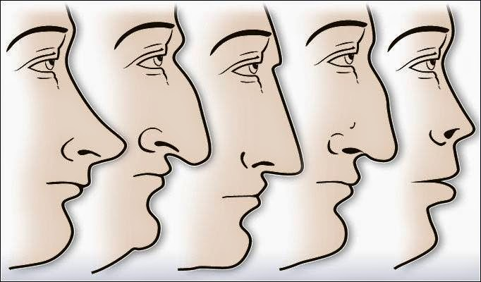 nose-type-personality