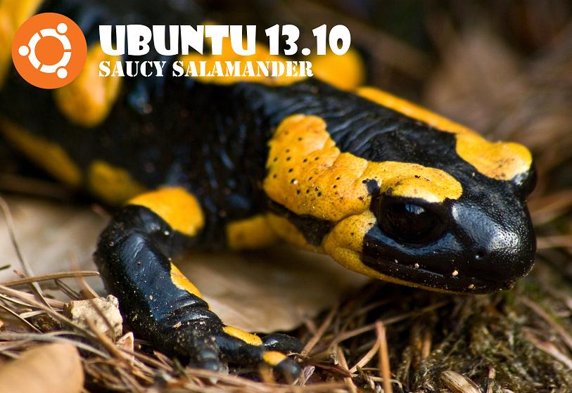 Ubuntu 13.10 - Saucy Salamander