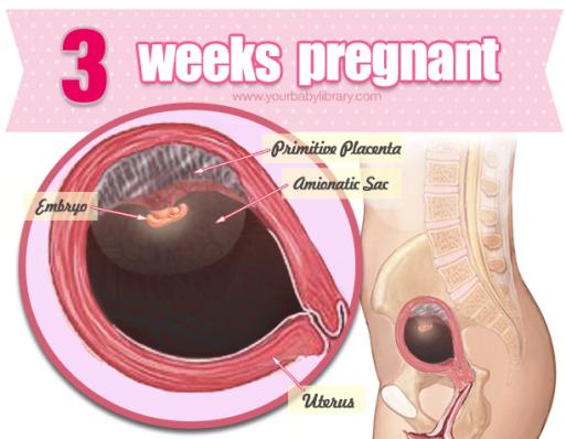 lyserødt udflåd gravid