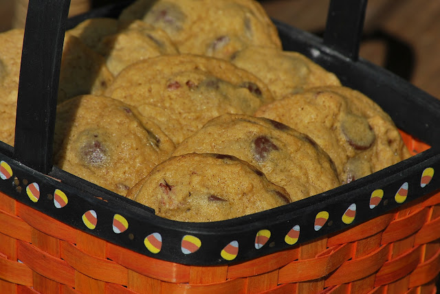My story in recipes: Pumpkin Pecan Chocolate Chip Cookies