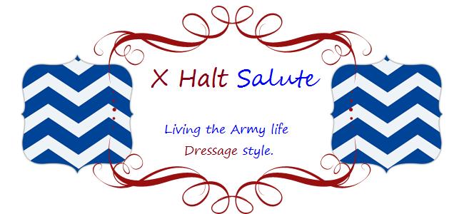 X Halt Salute