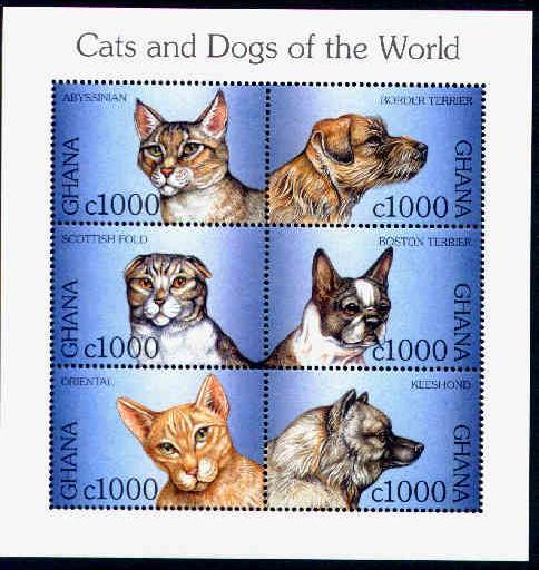 1997年ガーナ共和国 ボーダー・テリア ボストン・テリア キースホンドと猫の切手シート