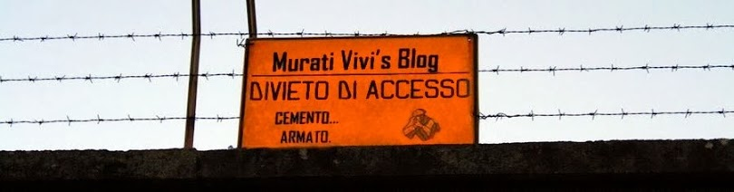 Murati Vivi's Blog