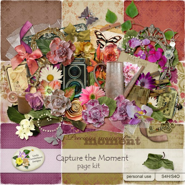 http://www.digitalscrapbookingstudio.com/store/index.php?main_page=index&cPath=194