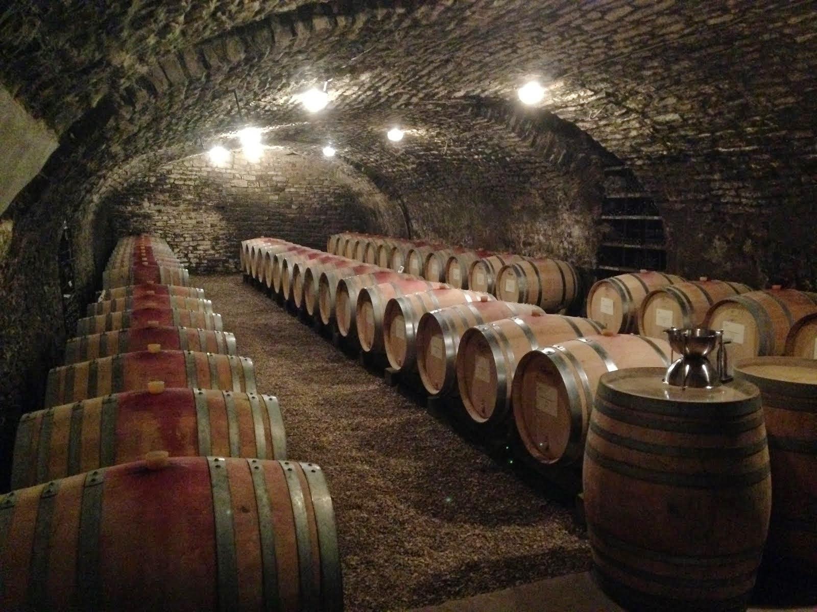 Cellar, Domaine Heresztyn, Gevrey-Chambertin