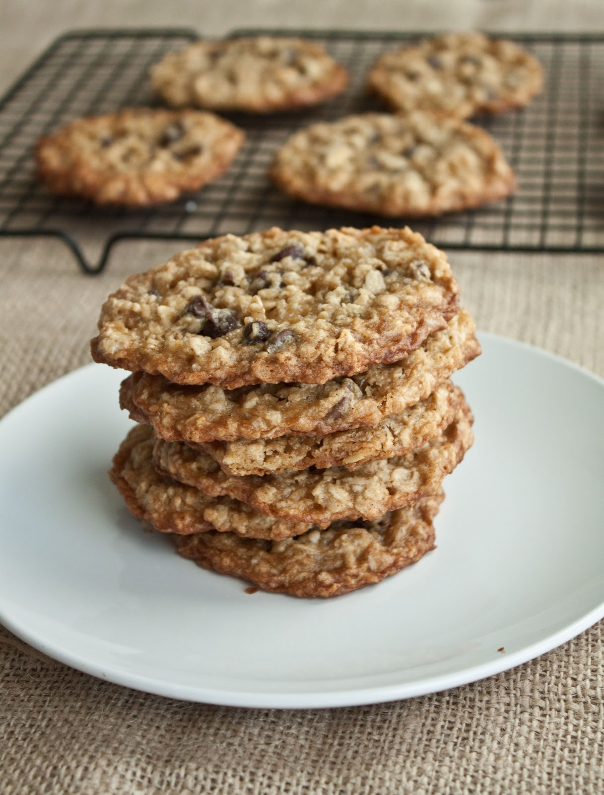 Chewy Chocolate Chip Oatmeal Cookies Recipe — Dishmaps