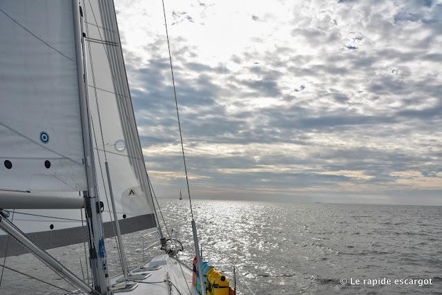 sailing-chesapeake