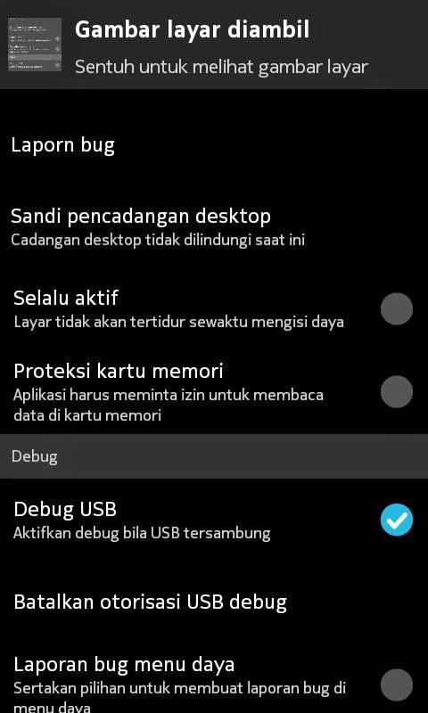 ceklis Debug USB