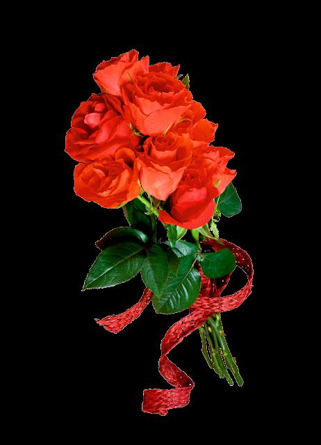 rosas rojas png