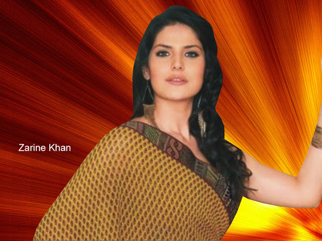 Indian Celebrities Zarine Khan Hot HD Images 1024x768
