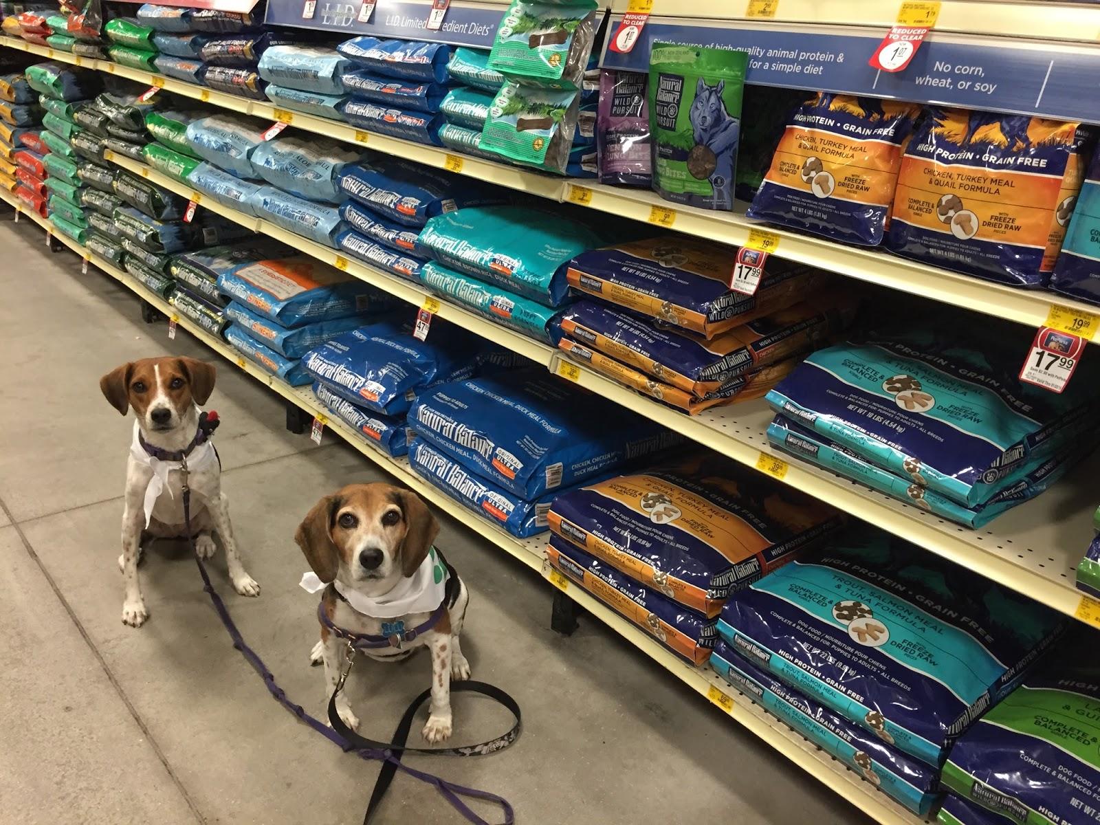 Life With Beagle Itchy Dog Naturalbalance Limited