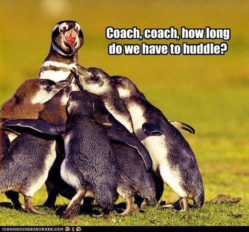 Funny Pictures Coach How Long Have Huddle