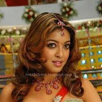 Tanushree dutta hot photoshoot
