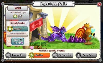 Dragão Ametista - Informações