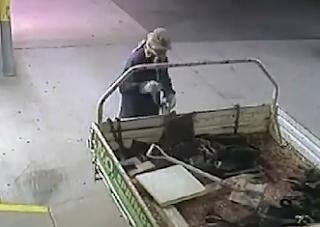 Un Ladrón bastante Estupido