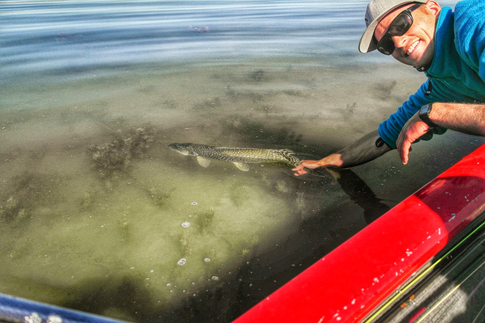 Utah stillwaters for Fish and game utah