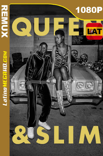 Queen & Slim (2019) Latino HD BDREMUX 1080P - 2019