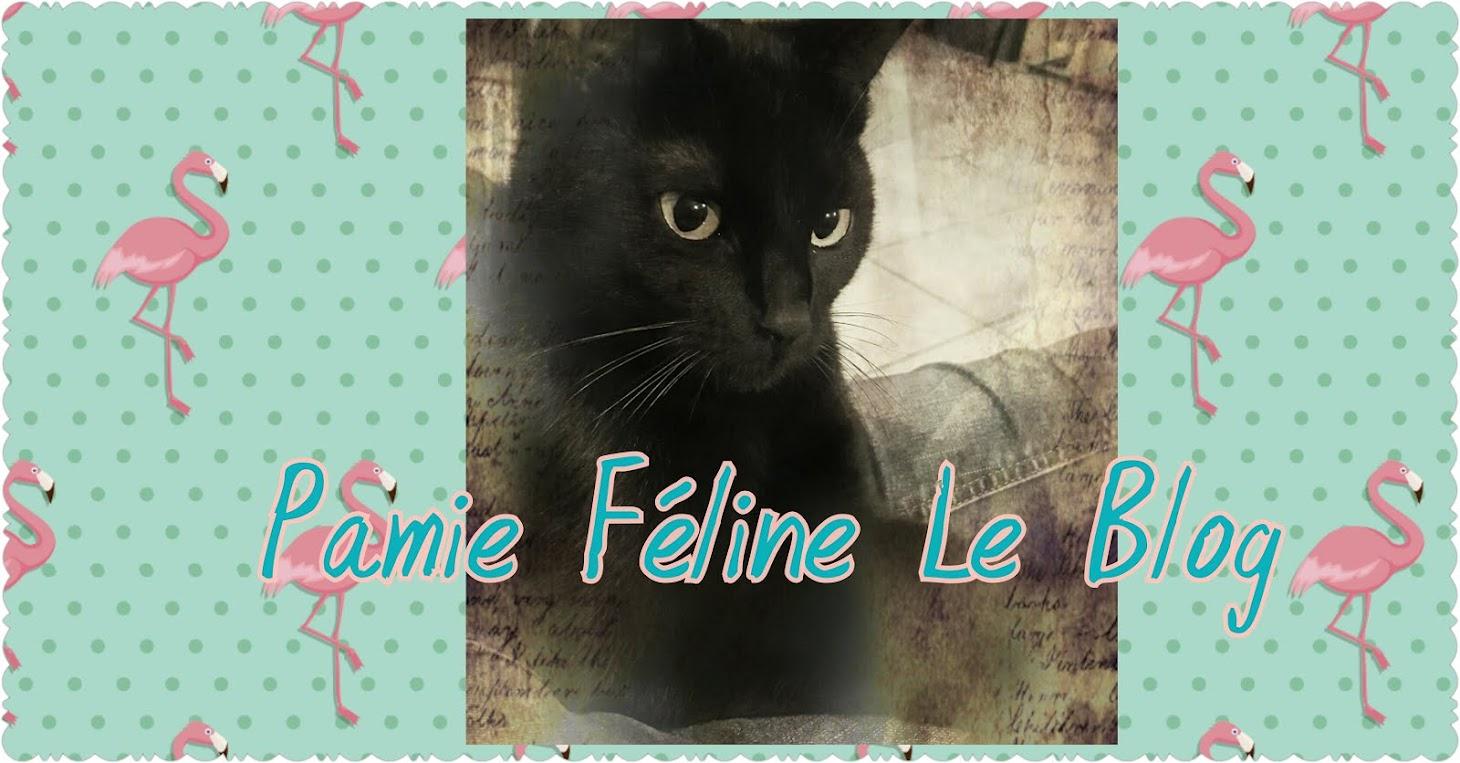Pamie Féline Le Blog