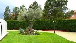 Decoracion de Jardines Exteriores, parte 3