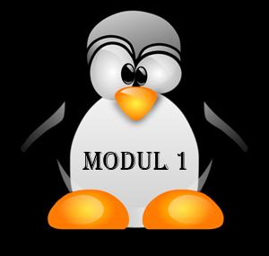 Perintah Dasar Linux Terlengkap - Modul 1