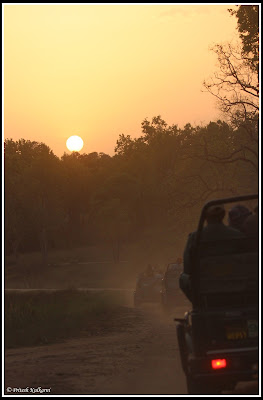 Time to say goodbye to Kanha National park