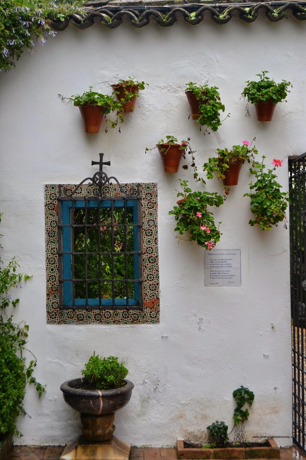 Jardineria eladio nonay macetas con una gracia especial - Jardineria eladio nonay ...
