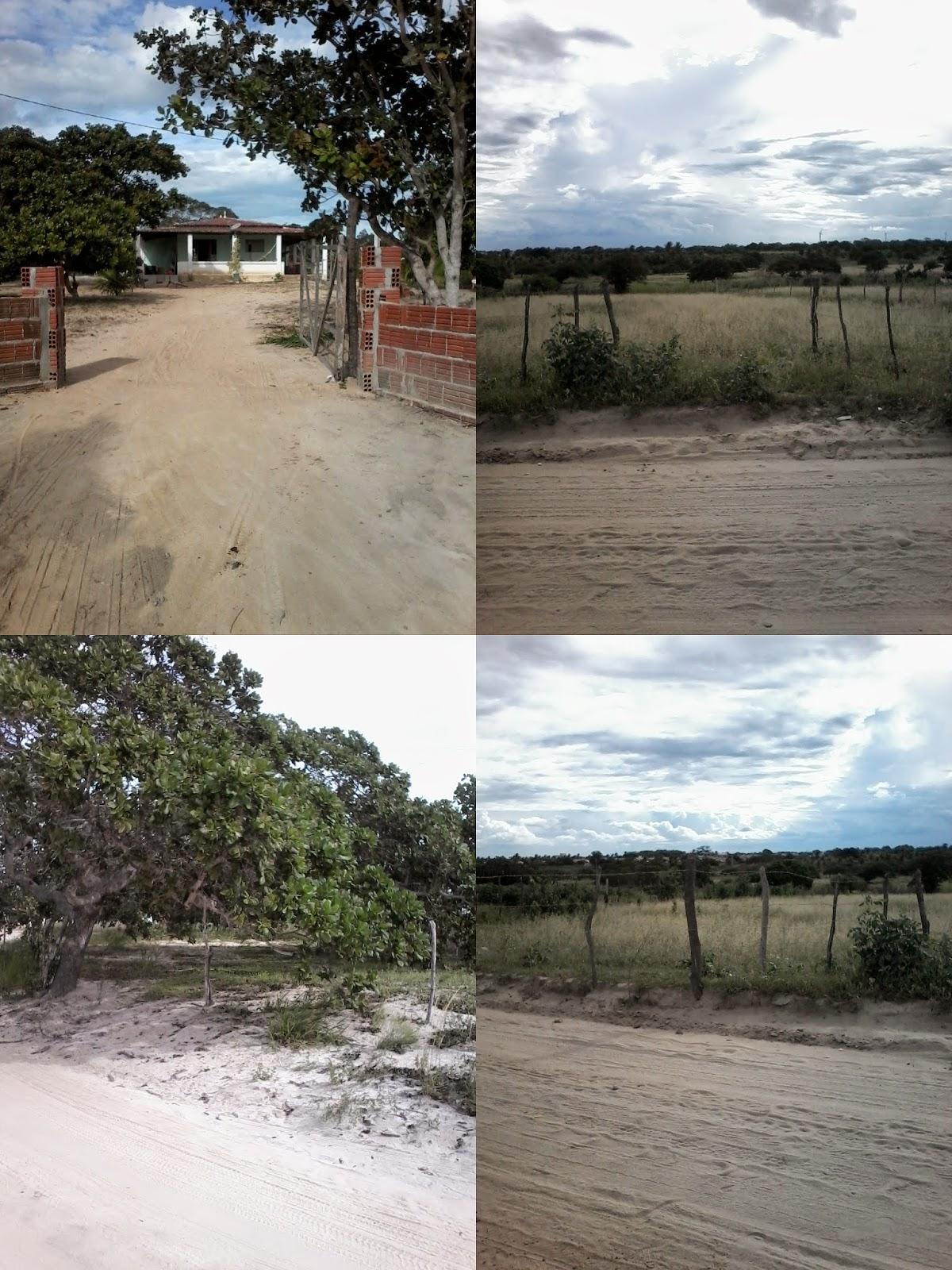 http://blogdoedmilsonsousa.blogspot.com.br/2015/05/vende-se-lotes-terrenos-e-casa-em-lagoa_2.html